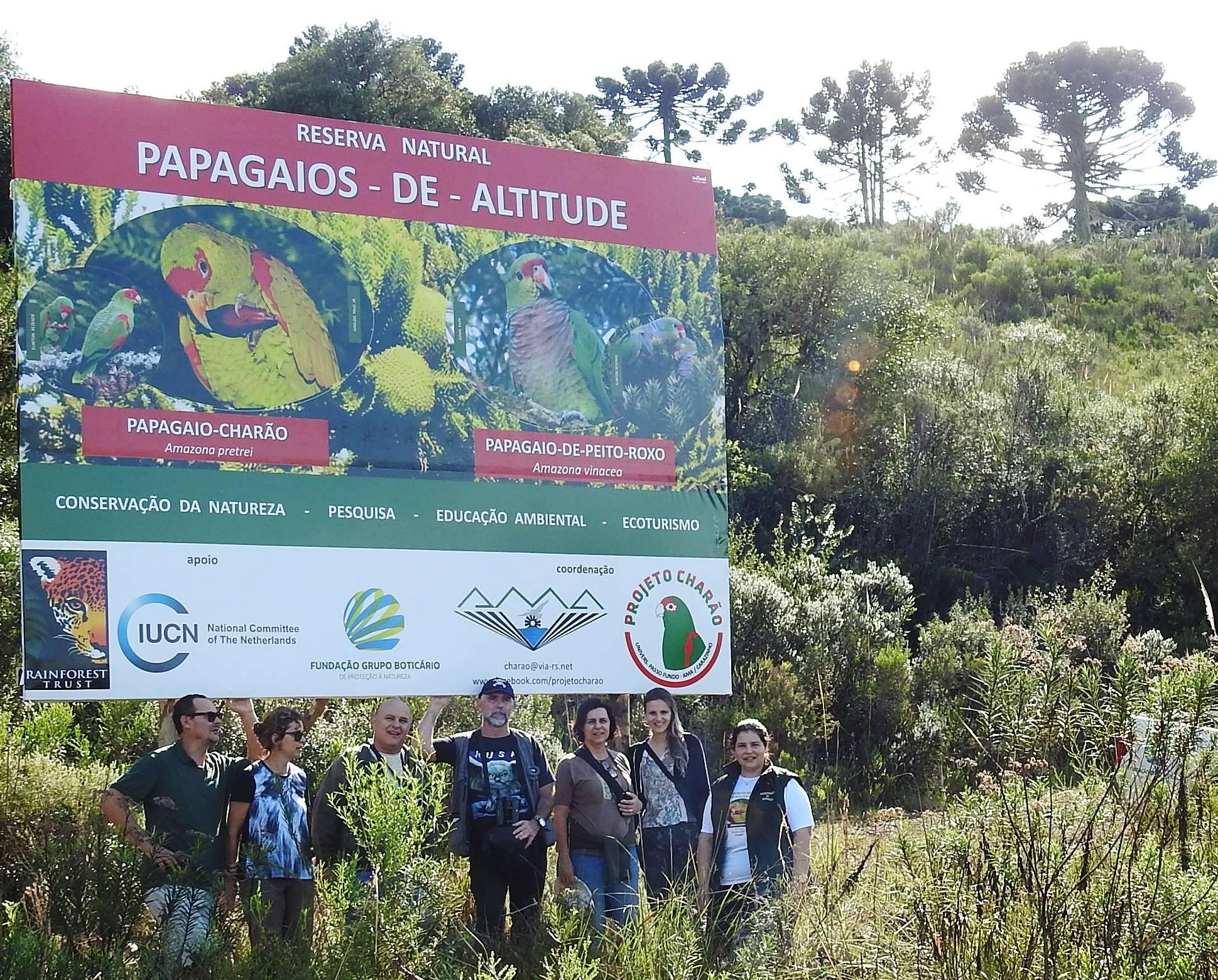 Em 14 de abril será inaugurada a Reserva Particular do Patrimônio Natural (RPPN) federal Papagaios-de-altitude, em Urupema (SC). Mais do que uma conquista válida para o meio ambiente, a área marca 25 anos de parceria entre pesquisadores e instituições de apoio à conservação da natureza. A Associação Amigos do Meio Ambiente (AMA) e a Fundação Grupo Boticário de Proteção à Natureza, desde 1993, atuam na conservação do papagaio-charão (Amazona pretrei) e do papagaio-do-peito-roxo (Amazona vinacea) por meio de iniciativas realizadas no Rio Grande do Sul, Santa Catarina, Paraná e, mais recentemente, no Sudeste do País.