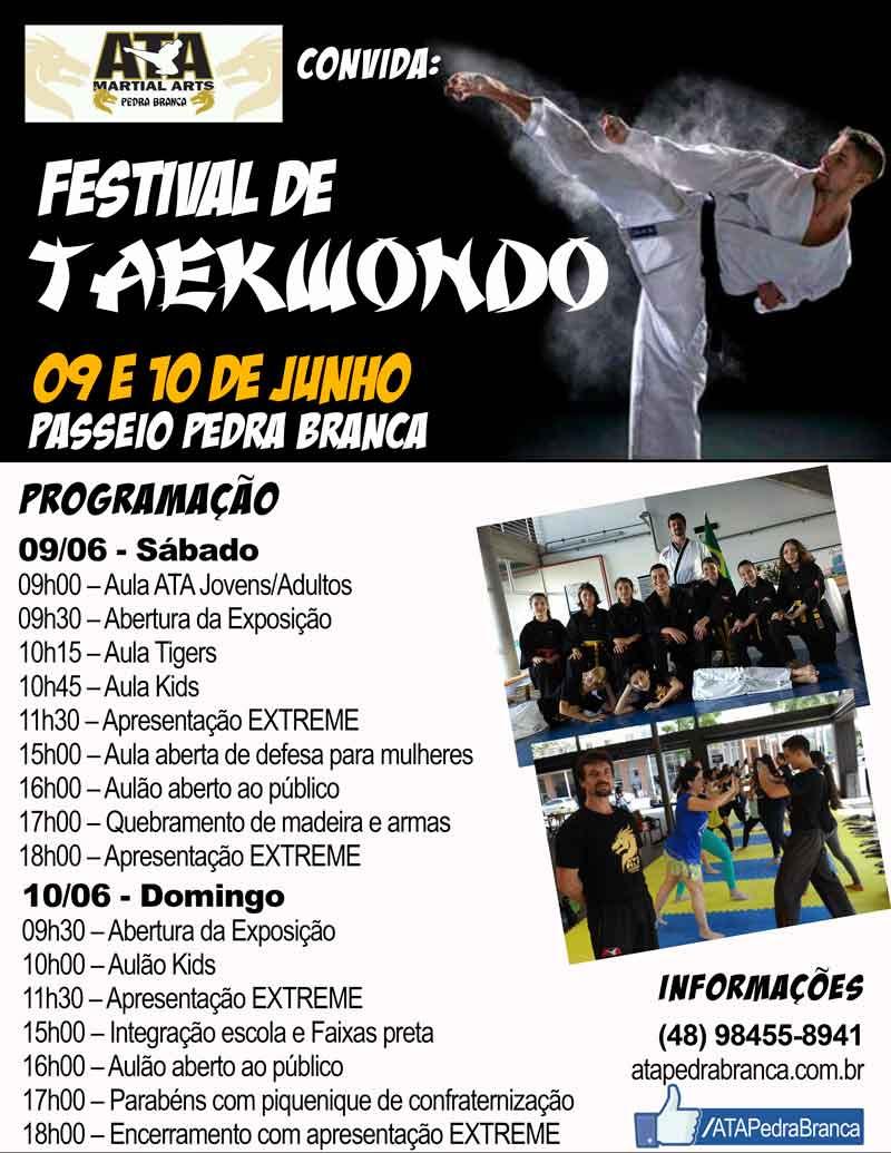 Festival de Taekwondo -Turismo on line