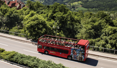Bustour -Turismo on line