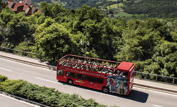 Bustour -Turismo on line