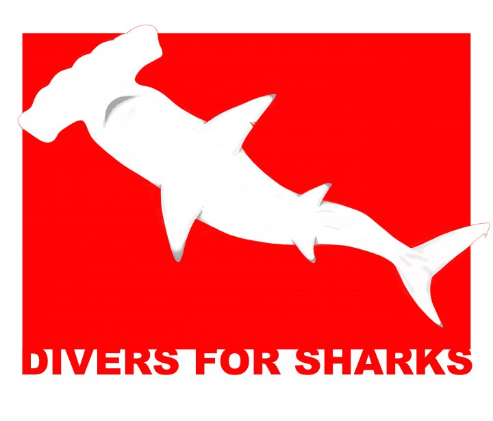 Dive for Sharks - Turismo