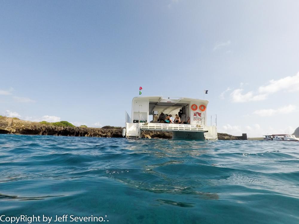 Noronha Diver - Turismo on line