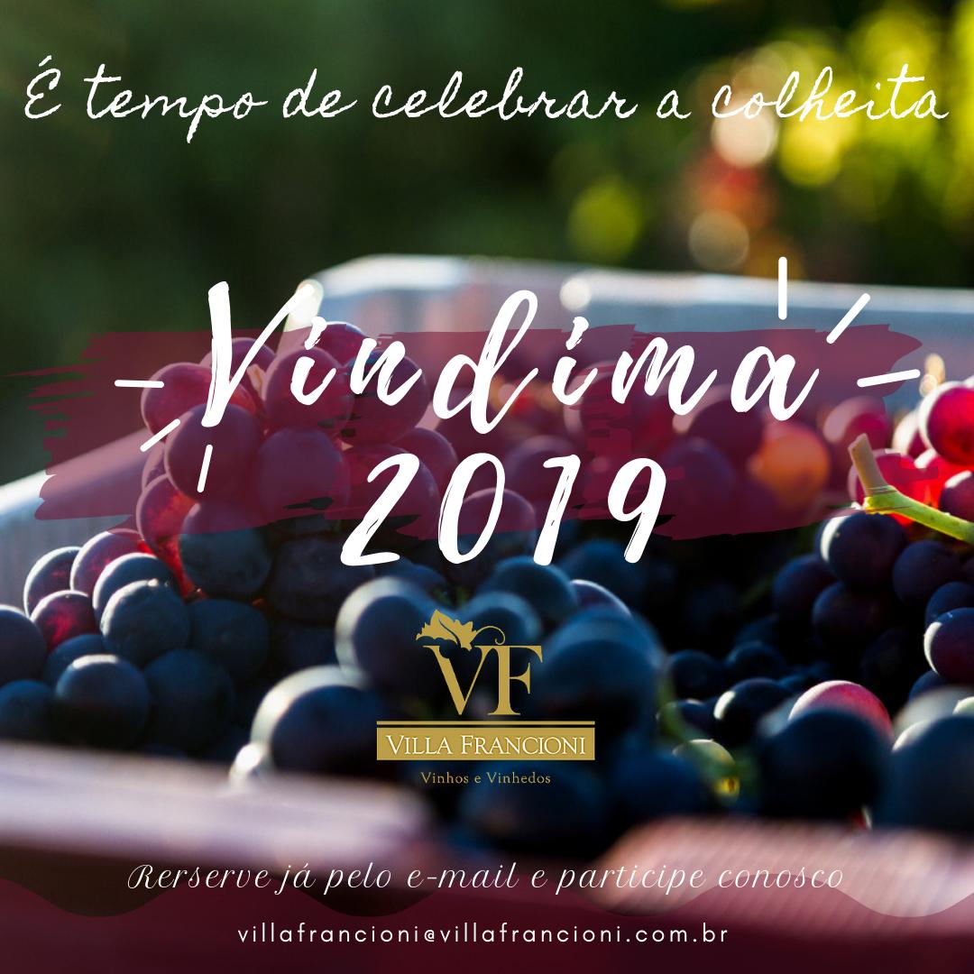 Vindima VF 2019 - turismoonline.net.br