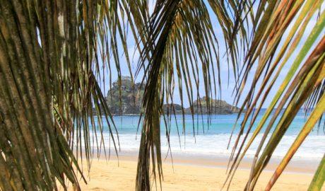 Praia do Sancho - turismoonline.net.br