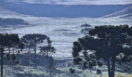 Baixas temperaturas no Sul - SC Registra 4ª Geada
