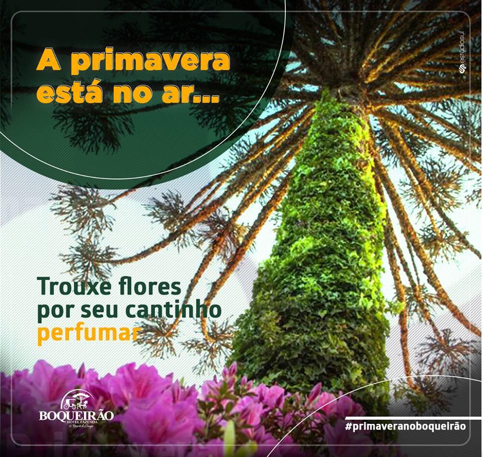 Viva a felicidade de experiências únicas na Serra Catarinense! - Boqueirão Hotel Fazenda & Resort De Campo.
