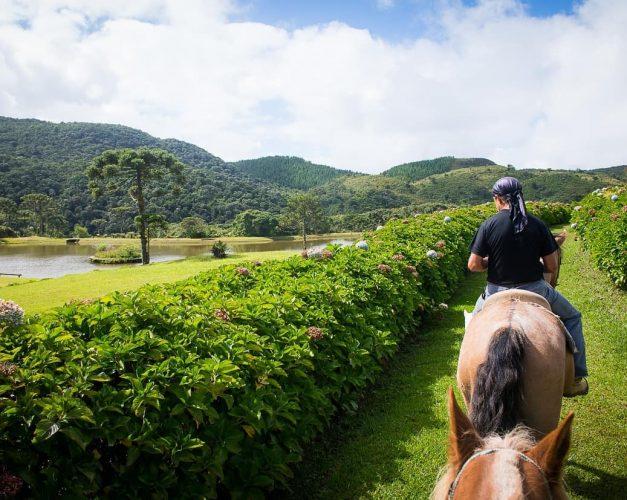Demanda turística em Santa Catarina - Santur anuncia investimentos