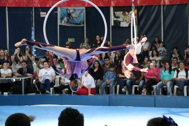 Circo Escola do Instituto Beto Carrero é contemplado com Prêmio Elisabete Anderle de Estímulo à Cultura 2019