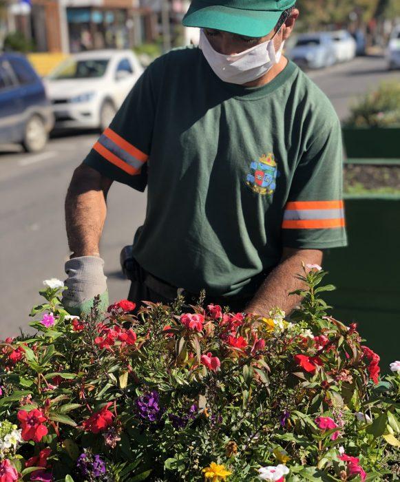 Gramado na Serra Gaúcha - Uma explosão de flores e jardins