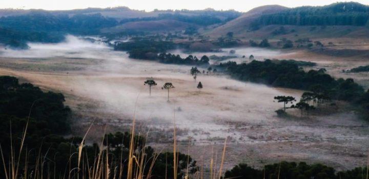 A semana começa mais uma vez muito gelada na Serra Catarinense