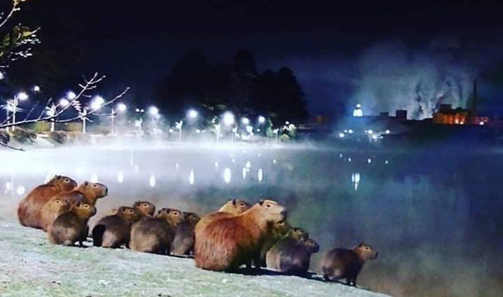 O inverno no Sul Maravilha tem proporcionado imagens inéditas
