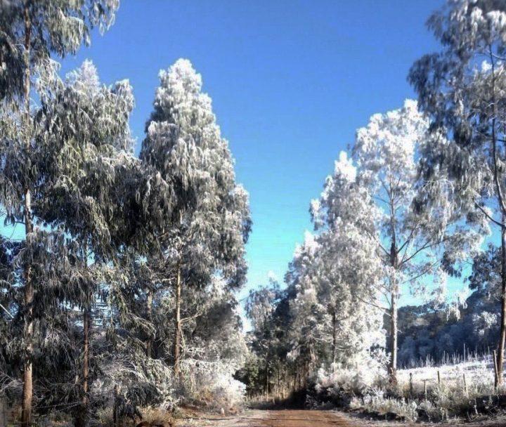 O inverno no Sul Maravilha tem proporcionado imagens inéditas - Sicelo nesta madrugada no Boava