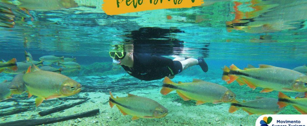 Sustentabilidade e solidariedade em destaque na Semana Internacional de Turismo