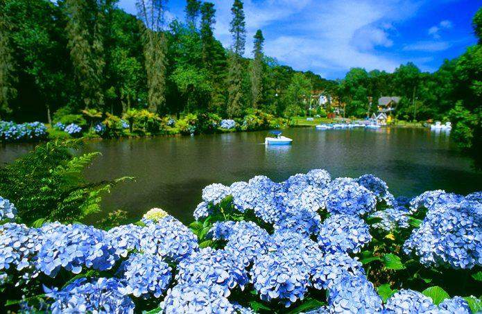 Nosso Planeta é possuidor de cenários paradisíacos e inesquecíveis